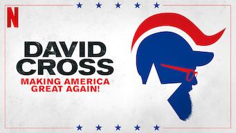David Cross: Making America Great Again! (2016)