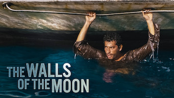The Walls of the Moon (2015)