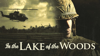 In the Lake of the Woods (1996)