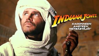 Indiana Jones - Kadonneen aarteen metsästäjät (1981)