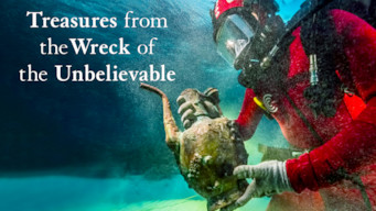 Damien Hirst: Treasures from the Wreck of the Unbelievable -näyttely (2017)
