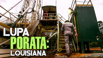 Lupa porata: Louisiana (2014)