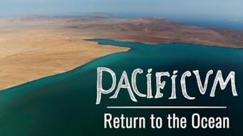 Pacificum: Peru ja Tyynimeri (2017)