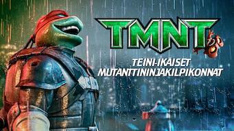 Teini-ikäiset mutanttininjakilpikonnat (2007)