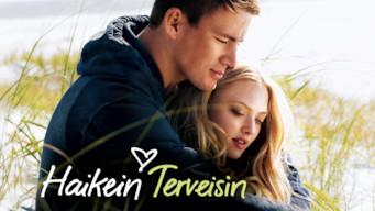 Haikein terveisin (2010)