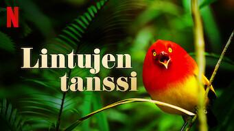 Lintujen tanssi (2019)