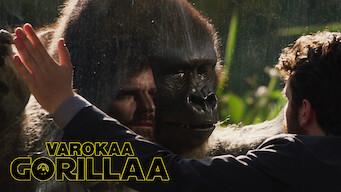 Varokaa gorillaa (2019)